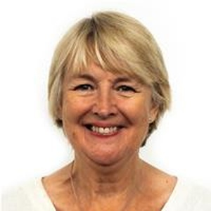 Photo of Siân Gwenllian