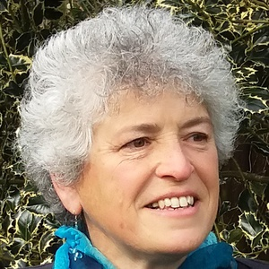 Photo of Lynn Susan Wetenhall
